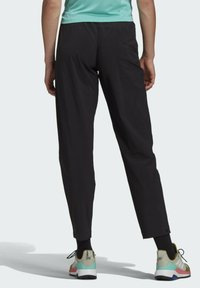 adidas Performance - TERREX LITEFLEX HIKING TRACKSUIT BOTTOMS - Tracksuit bottoms - black - 2