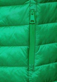 Cecil - Winter jacket - grün - 3