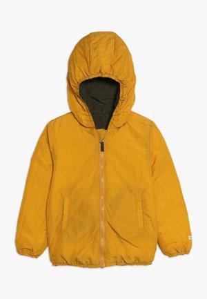 SNOW JACKET BABY  - Chaqueta de plumas - amber yellow/orion blue