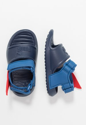 DIVECAT V2 INJEX HERO  - Pool slides - peacoat/bright cobalt/high risk red