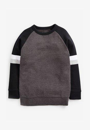 RAGLAN - Sweatshirt - grey