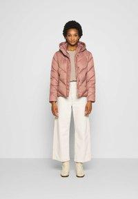 Saint Tropez - CATJASZ SHORT JACKET - Winter jacket - burlwood - 1