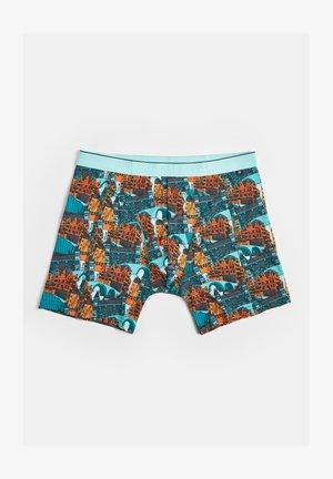 HOLLANDS DESSIN - Pants - multi-coloured