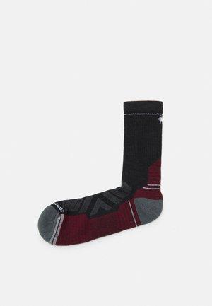 PERFORMANCE HIKE LIGHT CUSHION CREW - Sportovní ponožky - charcoal