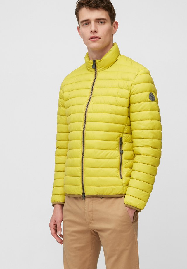Winter jacket - spring haze