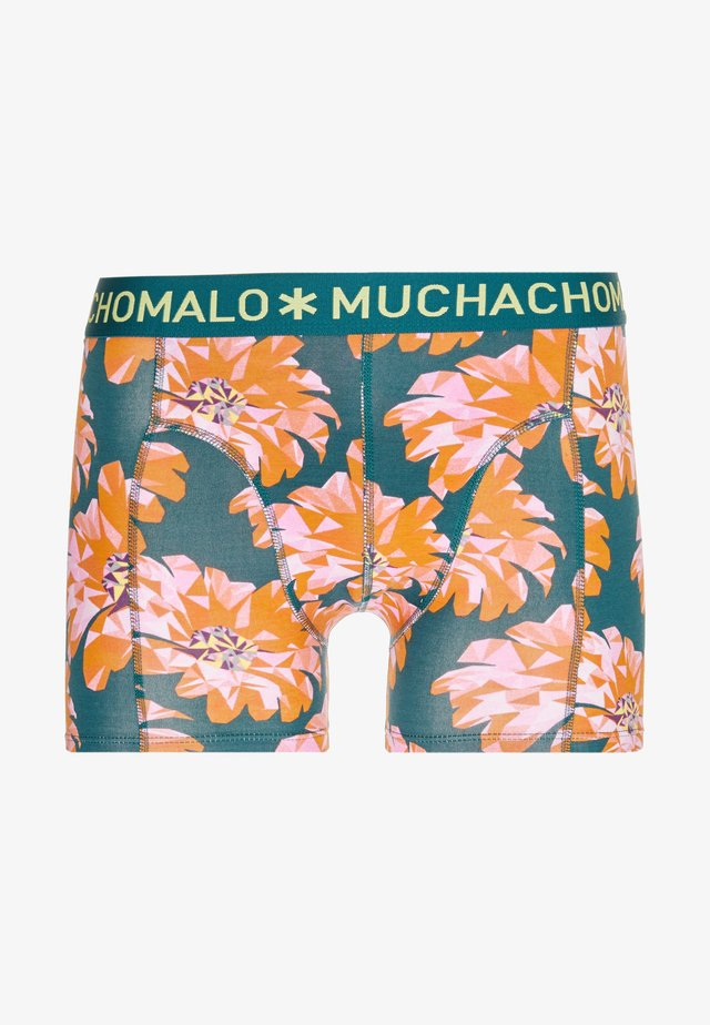 PRINT - Pants - multicolor