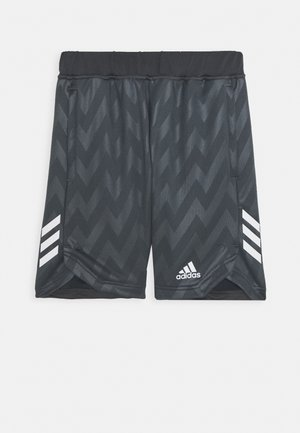 JB TR XFG SH - Sports shorts - grey six/white