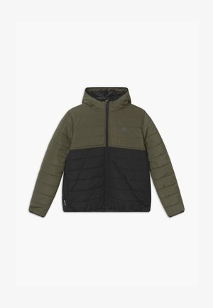 ALDER PUFF FUNDAMENT - Winter jacket - flint black