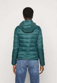 ONLY Tall - ONLSANDIE HOOD JACKET - Light jacket - ponderosa pine - 2