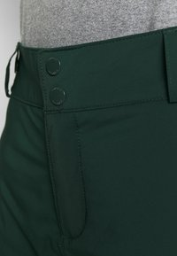 Columbia - BACKSLOPE - Snow pants - spruce - 3