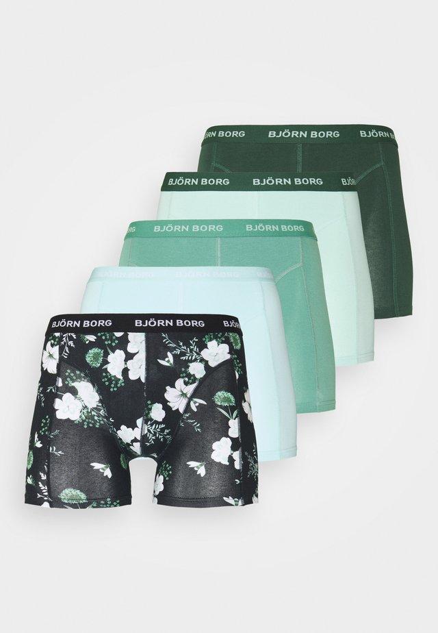 BOUQUET SAMMY 5 PACK - Pants - black beauty