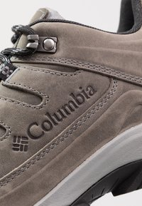 Columbia - TERREBONNE II OUTDRY - Hiking shoes - ti grey steel/blue jay - 5