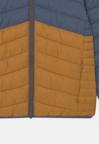 Marks & Spencer London - Winter jacket - dark blue/orange - 2