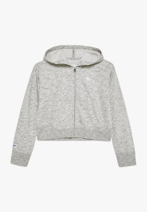 CORE FULLZIP  - Zip-up hoodie - grey