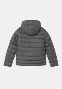 Blauer - GIUBBINI CORTI IMBOTTITO OVATTA - Winter jacket - grey - 1