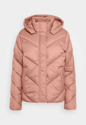 CATJASZ SHORT JACKET - Winter jacket - burlwood