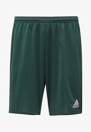 PARMA 16 SHORTS - Sports shorts - green