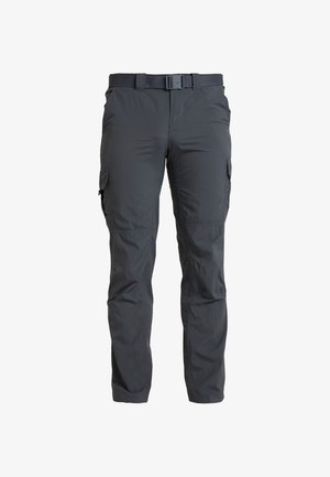 SILVER RIDGE CARGO PANT - Outdoor trousers - carbon