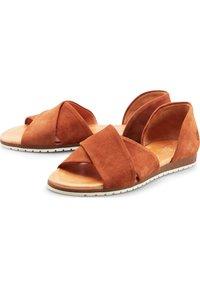 Apple of Eden - CHIUSI - Sandals - mittelbraun - 2