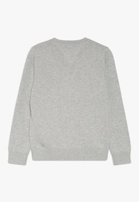 Tommy Hilfiger - ESSENTIAL GRAPHIC  - Jumper - grey - 1
