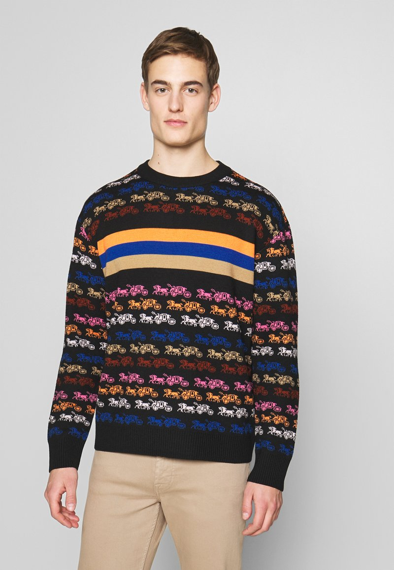 Coach - RAINBOW HORSE AND CARRIAGE  - Pullover - multi