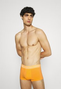 Calvin Klein Underwear - PRIDE LOW RISE TRUNK 5 PACK - Culotte - pink/yellow/green - 3