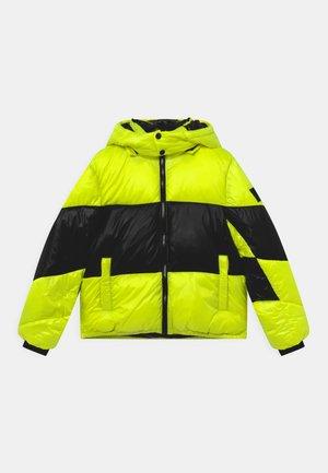 JORY - Vinterjakker - yellow