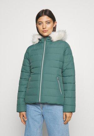 CORE PUFFER - Winter jacket - silver pine