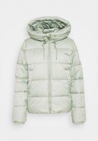 SHORT PUFFER JACKET  - Winter jacket - pistachio gray