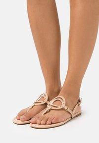 Coach - JERI - T-bar sandals - beechwood - 0