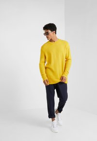 Bruuns Bazaar - CHRIS CREW NECK - Maglione - yellow - 1