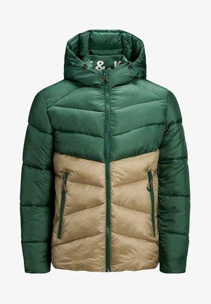 Winter jacket - trekking green