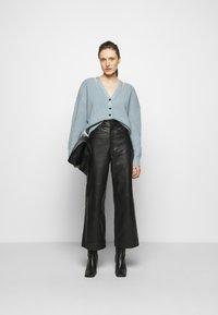 Proenza Schouler White Label - CARDIGAN BUTTON BACK - Cardigan - steel blue - 1