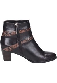 Piazza - Classic ankle boots - braun - 5
