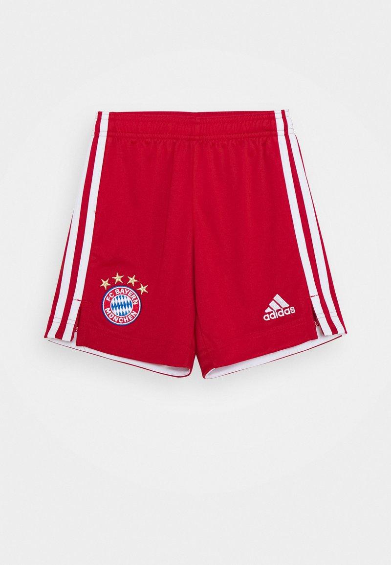 adidas Performance - FC BAYERN MUENCHEN SPORTS FOOTBALL - Sportovní kraťasy - red