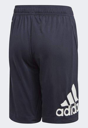 TRAINING EQUIPMENT SHORTS - Sports shorts - blue