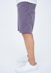 Carhartt WIP - CARSON  - Shorts - provence - 3