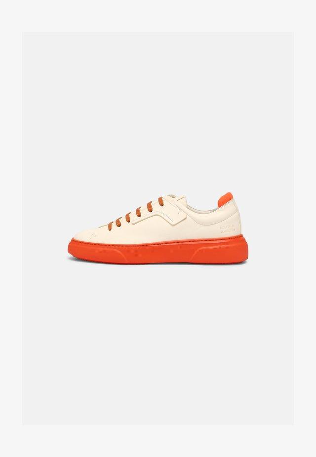 HARVEY 35 - Sneakers laag - white