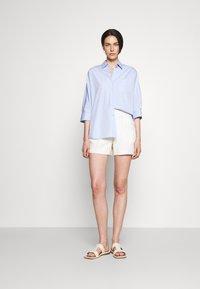 WEEKEND MaxMara - GIRALDA - Blouse - light blue - 1
