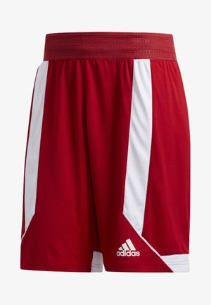 CREATOR 365 SHORTS - kurze Sporthose - red/white