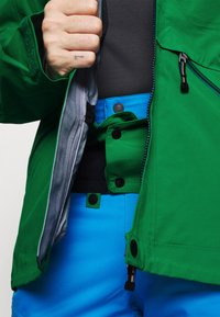 State of Elevenate - MENS BACKSIDE JACKET - Giacca da sci - green - 3