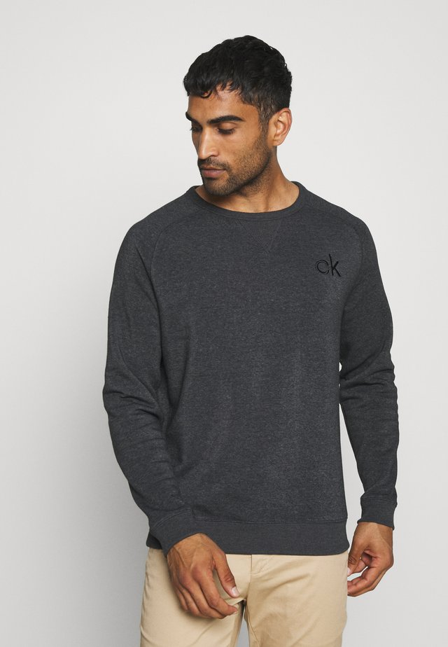 COLUMBIA CREW NECK - Sweater - charcoal marl