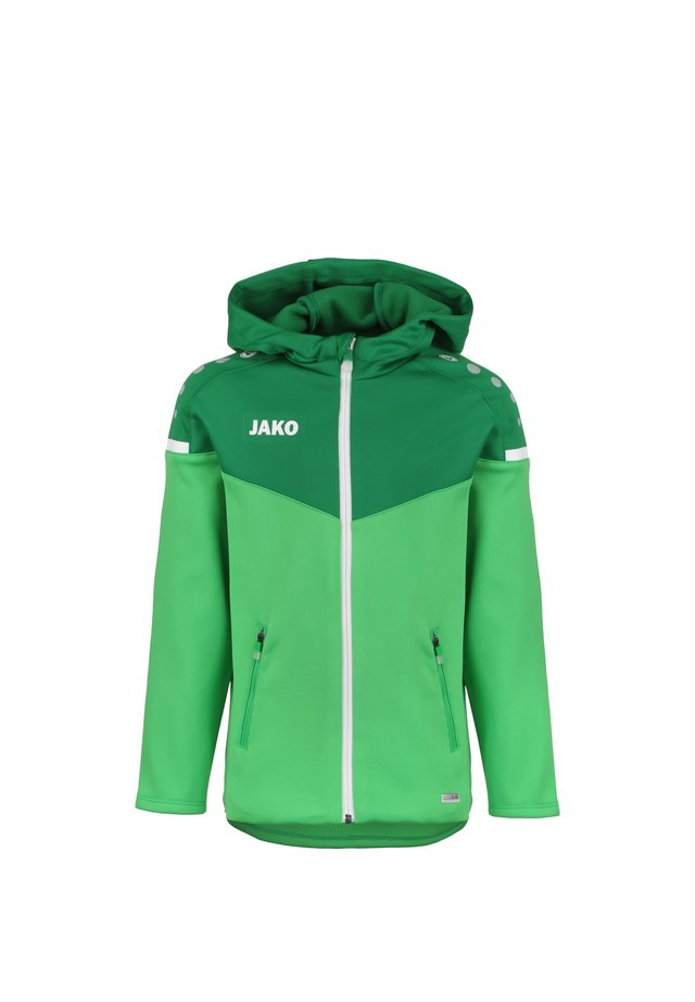 Winter jacket - soft green