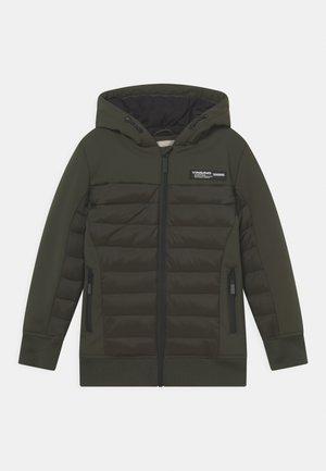 TEVISI SET - Winter jacket - proud army