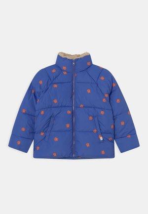 UNISEX - Winter jacket - ultramarine/true brown