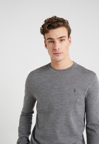 Polo Ralph Lauren - Jumper - fawn grey heather - 5