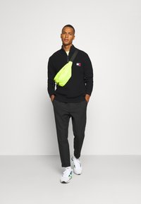 Tommy Jeans - BADGE HALFZIP - Pullover - black - 1