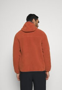The North Face - CARBONDALE - Hoodie - brown - 2