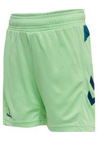 Hummel - ACTION  - Shorts - green ash/blue coral - 2