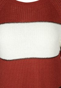 Zizzi - Jumper - red - 2